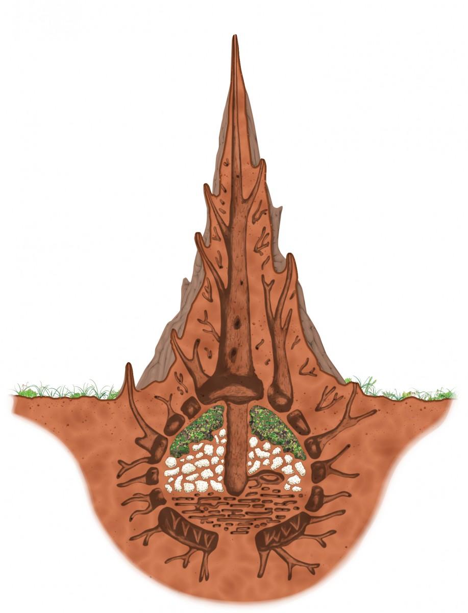 Nest Mound