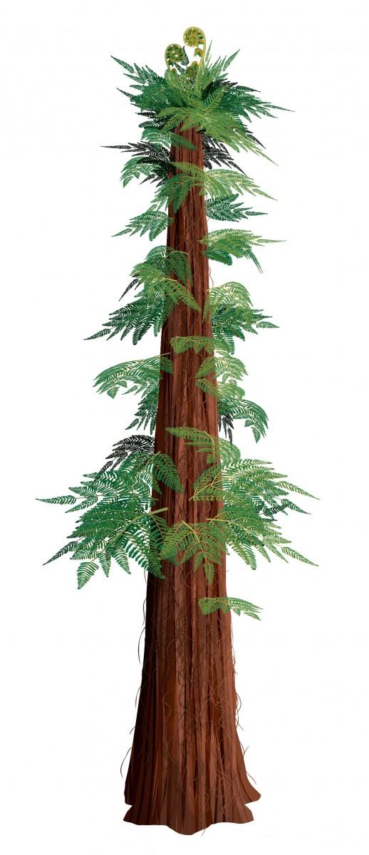 Prehistoric Tree