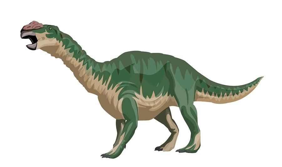 Muttaburrasaurus